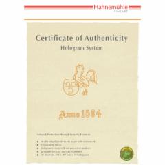 Echtheitszertifikat A4, 25 Blatt inkl. Hologramme