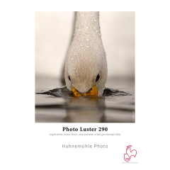 Photo Luster 290gm2 24'' Rolle 0.61 x 30m