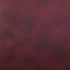 Scarlet Canvas Hintergrund 1.52 x 2.13m