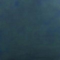 Alpine Canvas Hintergrund 2.44 x 3.66m