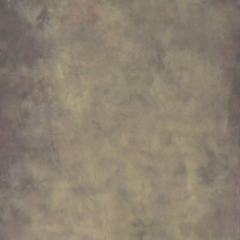 Desert Canvas Hintergrund 1.52 x 2.13m