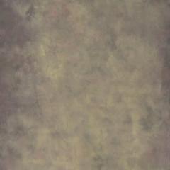 Desert Canvas Hintergrund 2.44 x 3.66m