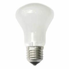 Einstellampe 100W/196V E27