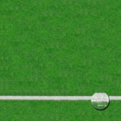 Floor Drop - Grass Sports Field 2.4m x 2.4m